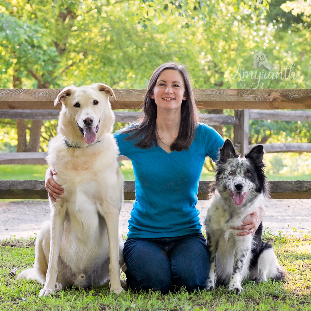 Always Pawsitive Dog Training | Certified Dog Trainers in Durham