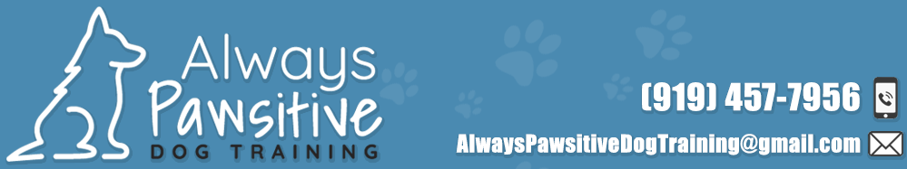 Always Pawsitive Dog Training